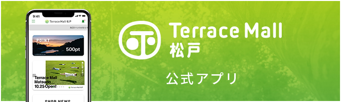 Terrace mall Matsudo formula application